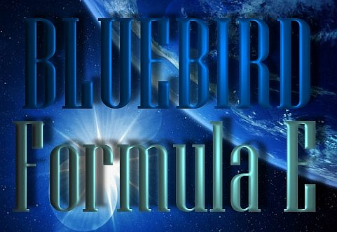 Bluebird contact us page link